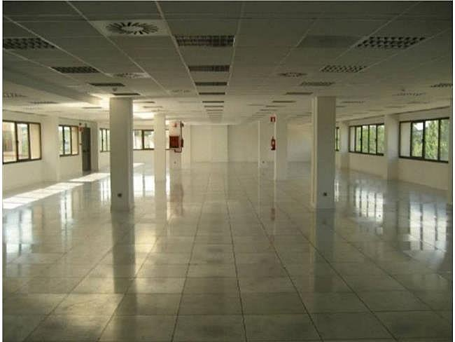 Oficina en alquiler en calle Gobelas, Moncloa-Aravaca en Madrid - 330353945