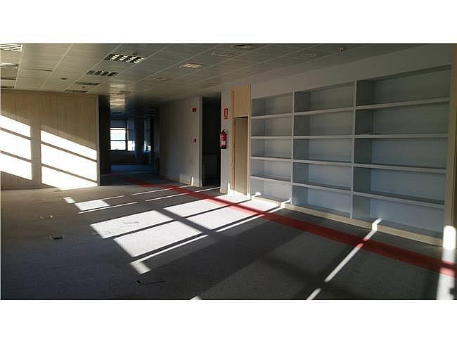 Oficina en alquiler en paseo De la Castellana, Salamanca en Madrid - 379992287