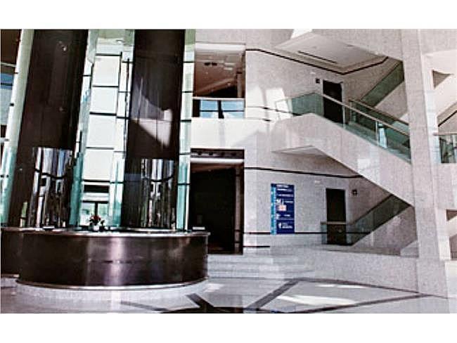 Oficina en alquiler en calle Eucalipto, Chamartín en Madrid - 333438482