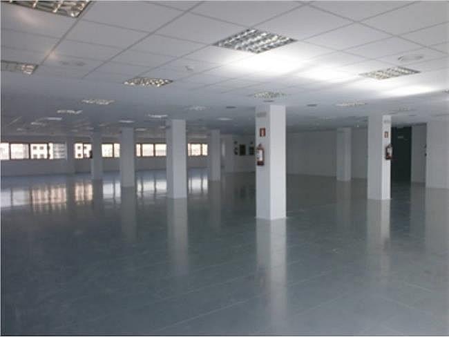 Oficina en alquiler en calle Eucalipto, Chamartín en Madrid - 333438503