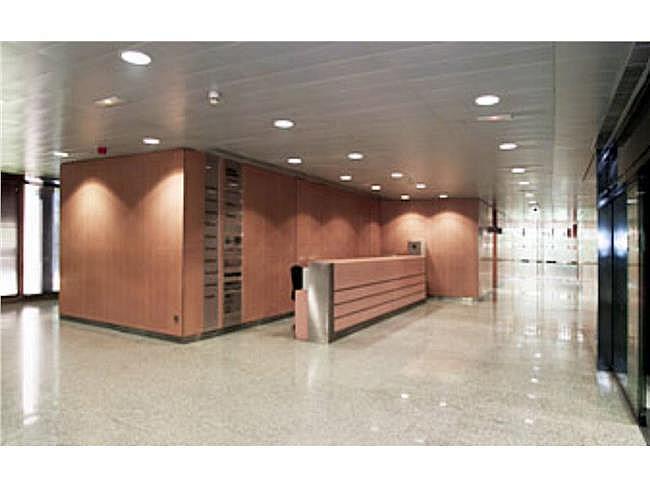 Oficina en alquiler en calle Eucalipto, Chamartín en Madrid - 333438509