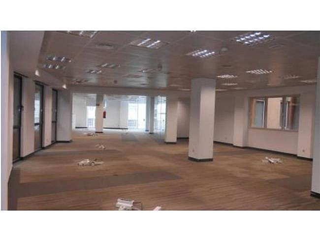 Oficina en alquiler en paseo De la Castellana, Chamberí en Madrid - 321084728