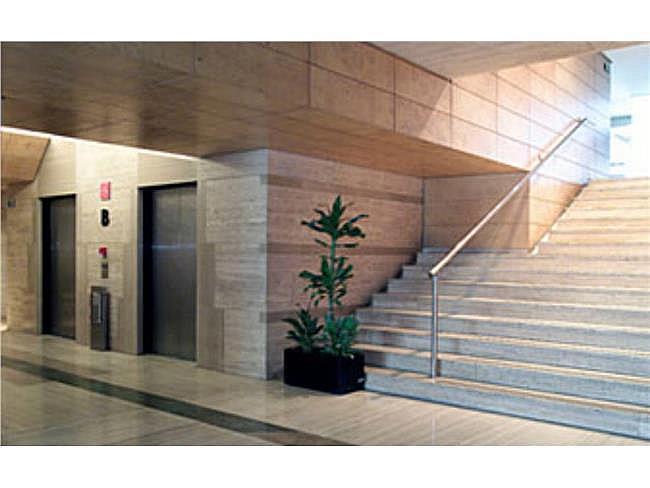 Oficina en alquiler en calle Ulises, Hortaleza en Madrid - 323345739
