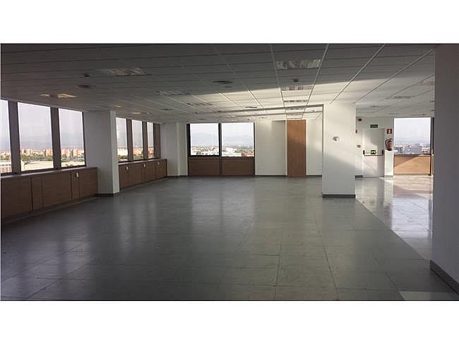 Oficina en alquiler en calle Manoteras, Hortaleza en Madrid - 315554189