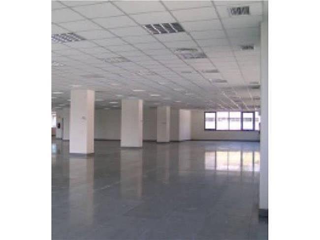 Oficina en alquiler en calle Mijancas, San blas en Madrid - 315554801