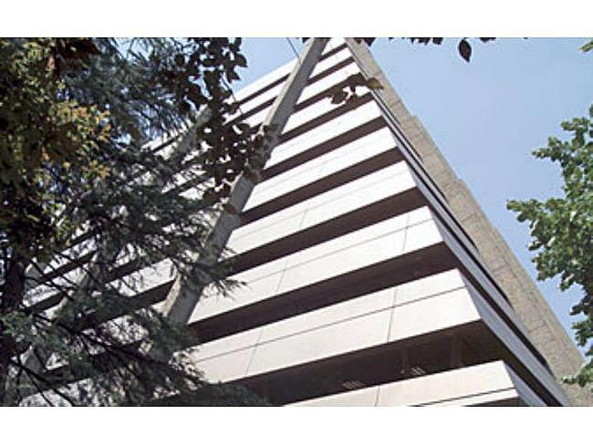 Oficina en alquiler en paseo De la Castellana, Chamberí en Madrid - 391294741