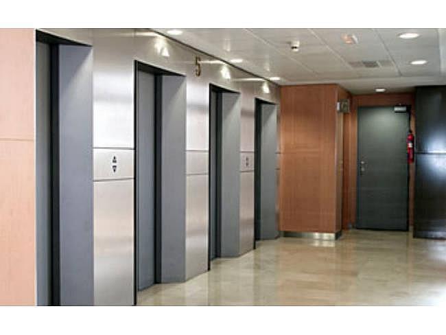 Oficina en alquiler en paseo De la Castellana, Chamberí en Madrid - 391294744