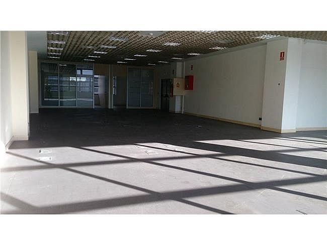 Oficina en alquiler en calle Velázquez, Salamanca en Madrid - 297897349