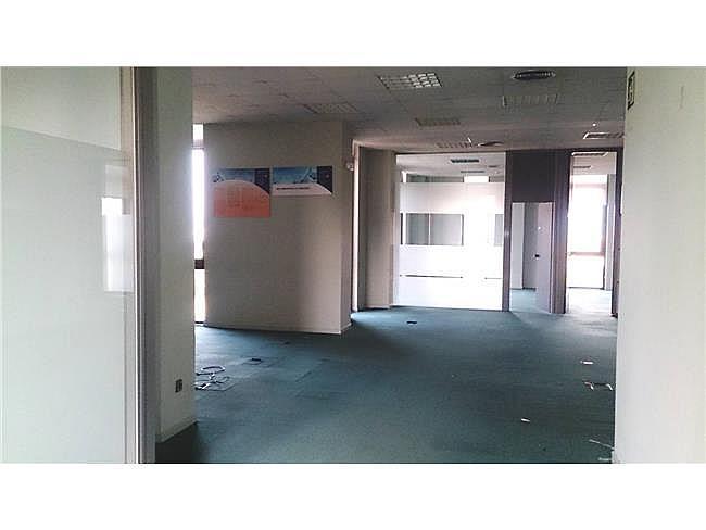 Oficina en alquiler en calle Torrelaguna, Ciudad lineal en Madrid - 301241105