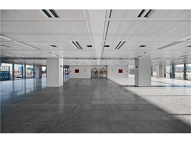 Oficina en alquiler en calle Quintanapalla, Fuencarral-el pardo en Madrid - 315553688