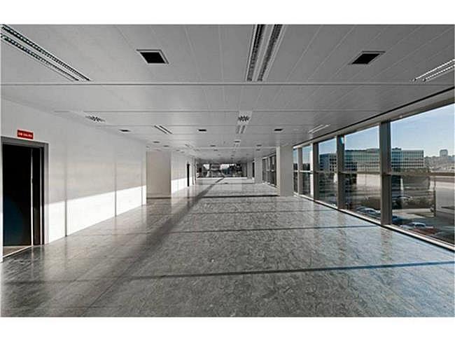 Oficina en alquiler en calle Quintanapalla, Fuencarral-el pardo en Madrid - 315553691