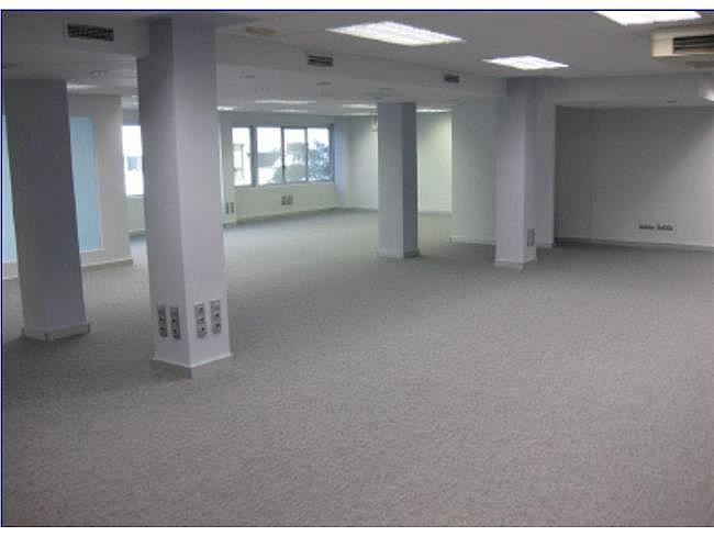Oficina en alquiler en calle Agustín de Foxá, Chamartín en Madrid - 301242005
