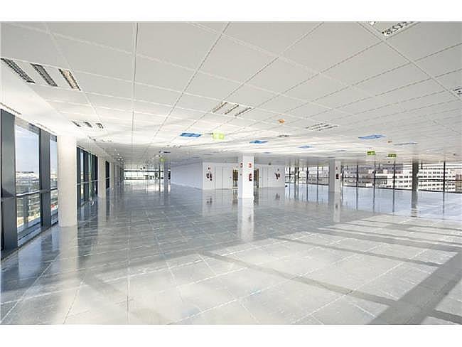 Oficina en alquiler en calle Agustín de Foxá, Chamartín en Madrid - 301242011
