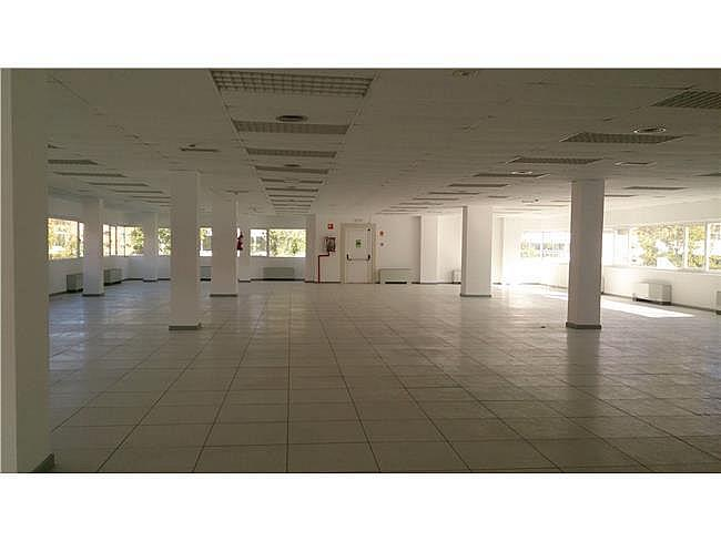 Oficina en alquiler en calle Paseo de Recoletos, Salamanca en Madrid - 374003187