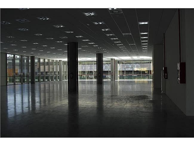 Oficina en alquiler en calle Europa, Hortaleza en Madrid - 301242605