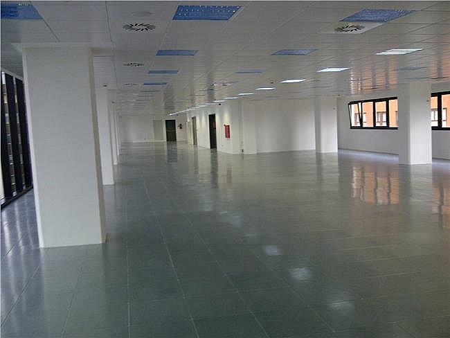 Oficina en alquiler en calle Europa, Hortaleza en Madrid - 301242611