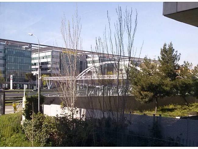 Oficina en alquiler en calle Sur del Aeropuerto de Barajas, Barajas en Madrid - 330353846