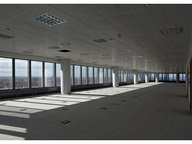 Oficina en alquiler en paseo Castellana, Tetuán en Madrid - 315551456