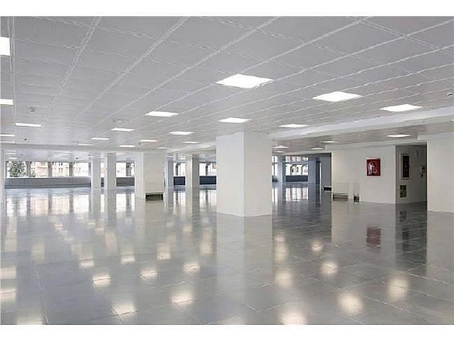 Oficina en alquiler en paseo Castellana, Chamberí en Madrid - 315551474