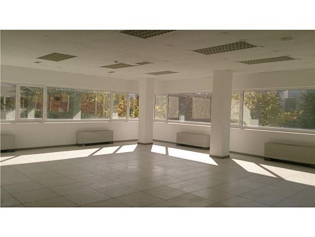 Oficina en alquiler en calle Playa de Las Américas, Rozas de Madrid (Las) - 321084161