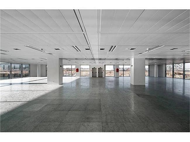 Oficina en alquiler en calle Quintanapalla, Fuencarral-el pardo en Madrid - 323343855
