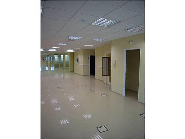 Oficina en alquiler en calle Gacia Martin, Pozuelo de Alarcón - 323343903