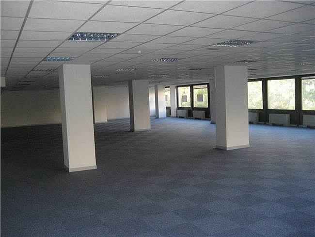 Oficina en alquiler en calle Condesa de Venadito, Ciudad lineal en Madrid - 323344203
