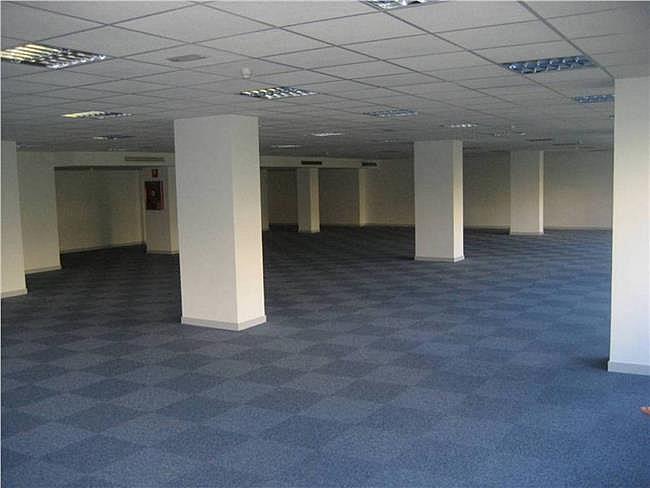 Oficina en alquiler en calle Condesa de Venadito, Ciudad lineal en Madrid - 323344206