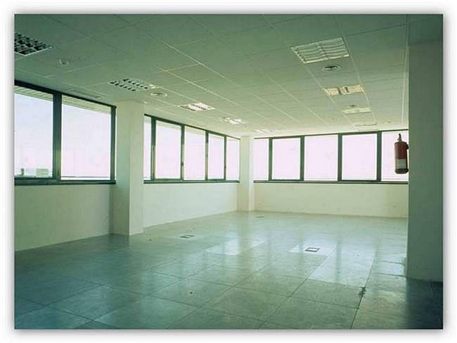 Oficina en alquiler en calle Sur del Aeropuerto de Barajas, Barajas en Madrid - 323344746