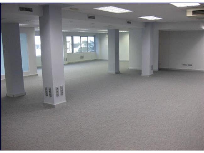 Oficina en alquiler en calle Alberto Alcocer, Chamartín en Madrid - 323345094
