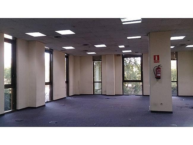 Oficina en alquiler en calle Ribera del Loira, Barajas en Madrid - 323345328