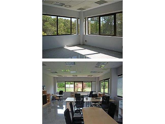 Oficina en alquiler en calle Valle del Roncal, Rozas de Madrid (Las) - 325606993