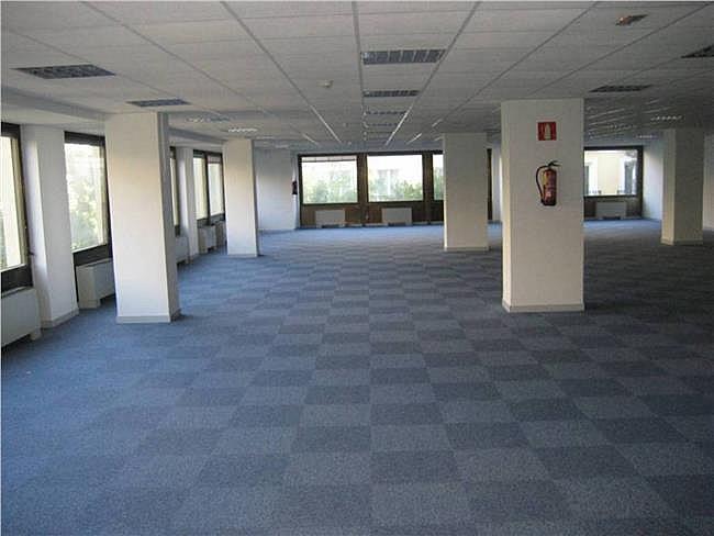 Oficina en alquiler en calle Condesa de Venadito, Ciudad lineal en Madrid - 325607401