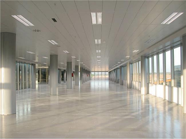 Oficina en alquiler en calle Ribera del Loira, Barajas en Madrid - 327903161