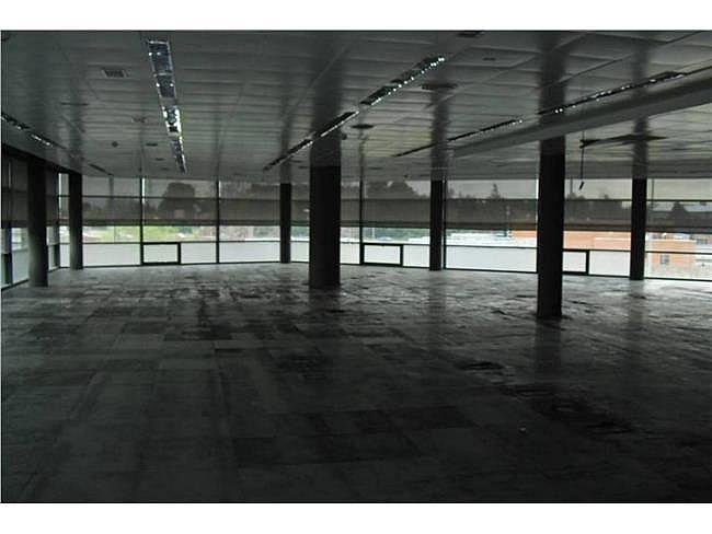 Oficina en alquiler en calle Musgo, Moncloa-Aravaca en Madrid - 330352589