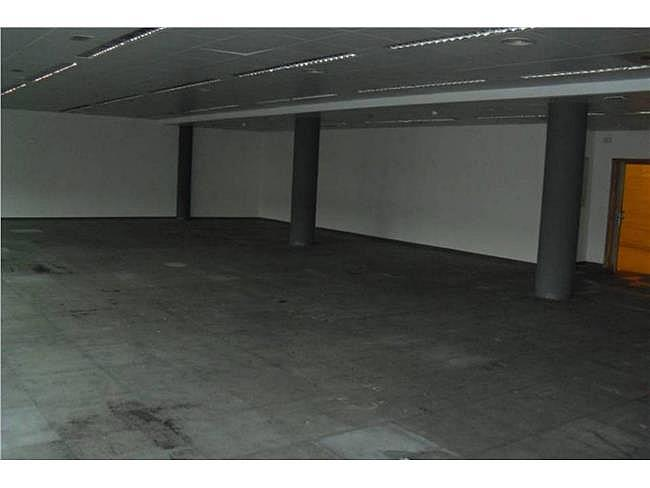Oficina en alquiler en calle Musgo, Moncloa-Aravaca en Madrid - 330352607