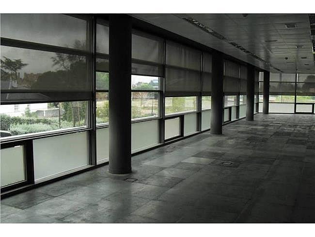 Oficina en alquiler en calle Musgo, Moncloa-Aravaca en Madrid - 330352610