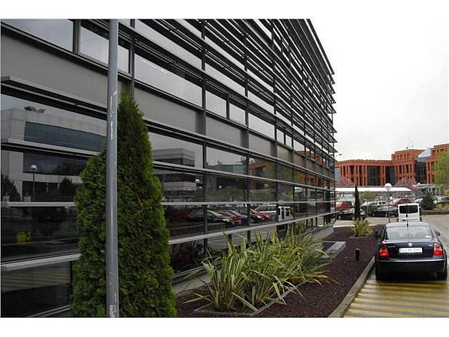 Oficina en alquiler en calle Musgo, Moncloa-Aravaca en Madrid - 330352613