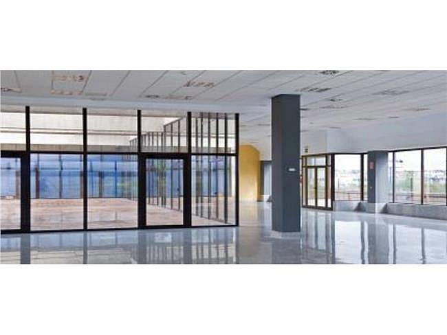 Oficina en alquiler en calle Dublín, Rozas de Madrid (Las) - 330353300