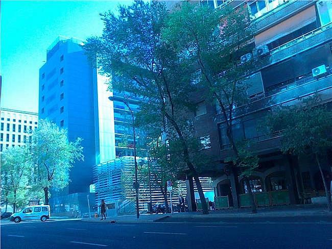 Oficina en alquiler en calle Capitán Haya, Tetuán en Madrid - 330685305