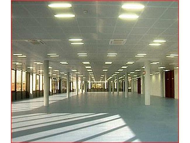 Oficina en alquiler en calle Via de Los Poblados, Hortaleza en Madrid - 330685599