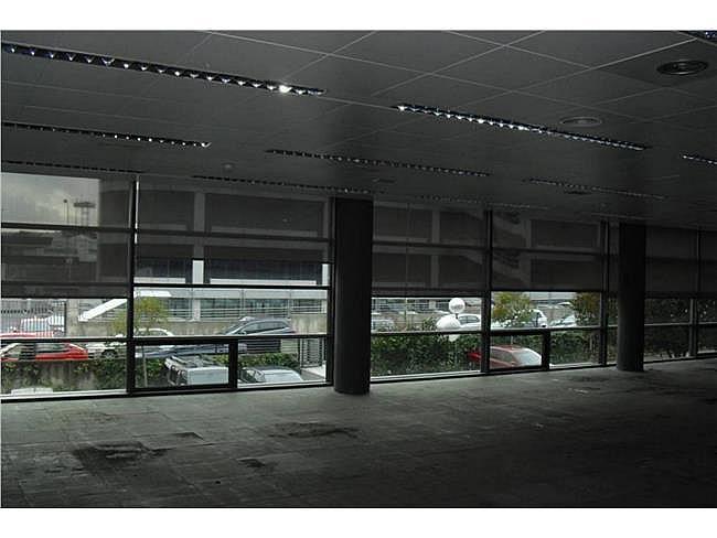 Oficina en alquiler en calle Musgo, Moncloa-Aravaca en Madrid - 332577701