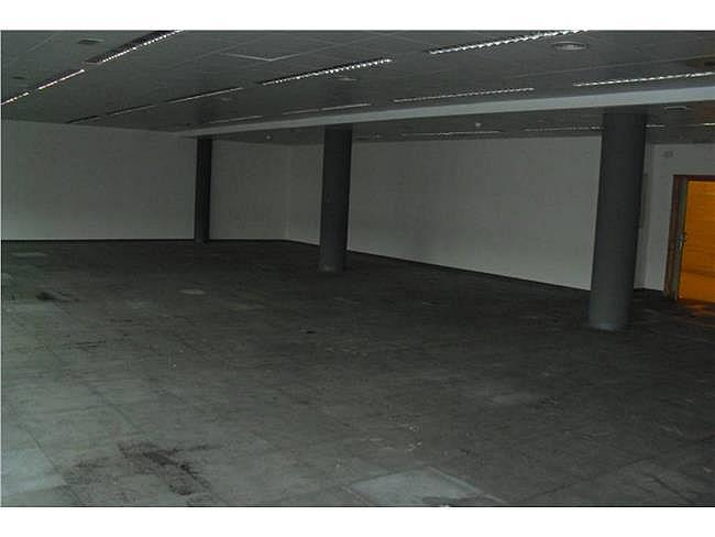 Oficina en alquiler en calle Musgo, Moncloa-Aravaca en Madrid - 332577704