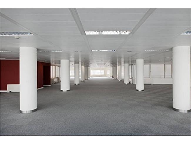 Oficina en alquiler en calle Caleruega, Costillares en Madrid - 332578502