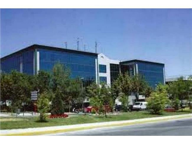 Oficina en alquiler en calle Isla Graciosa, San Sebastián de los Reyes - 315553592