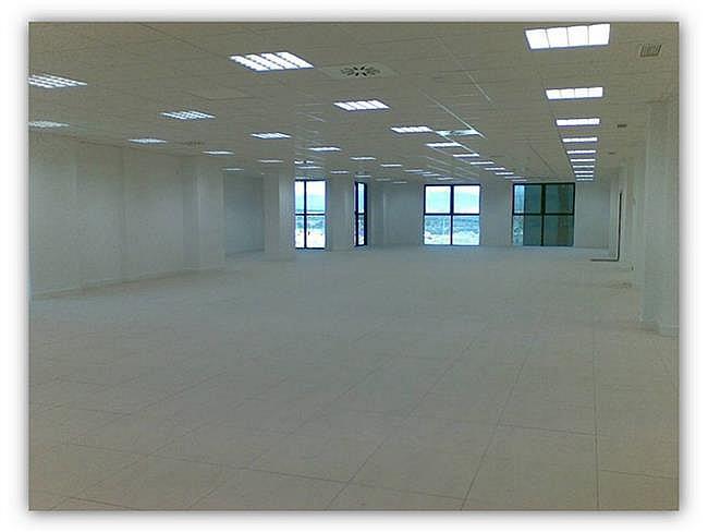 Oficina en alquiler en calle Paseo de la Castella, Chamartín en Madrid - 267570485