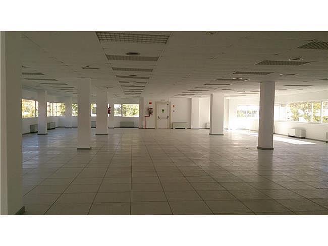 Oficina en alquiler en calle Paseo de la Castella, Chamartín en Madrid - 267570488