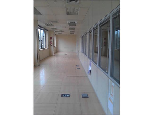 Oficina en alquiler en calle Paseo de la Castellana, Chamartín en Madrid - 350843410
