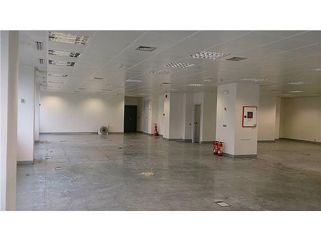 Oficina en alquiler en calle Manoteras, Hortaleza en Madrid - 330352994