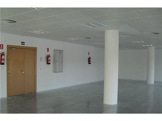 Oficina en alquiler en calle Jose Echegaray, Rozas de Madrid (Las) - 267570806